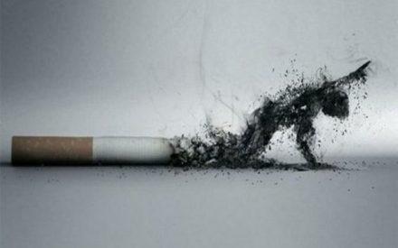 Los riegos del tabaco