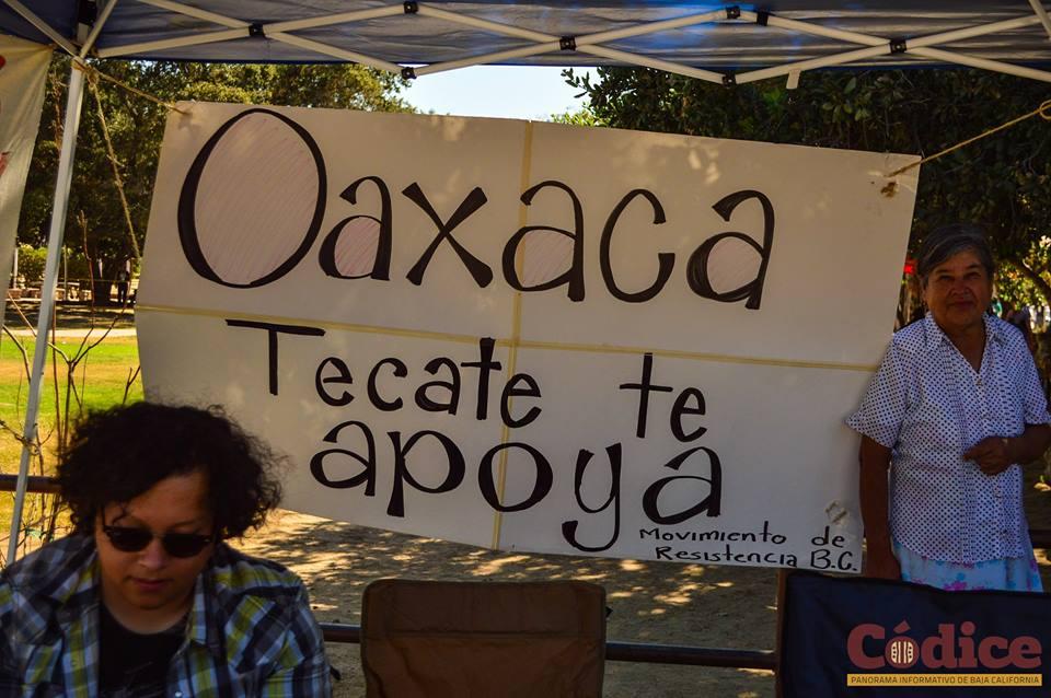 Conciencia Tecate Reforma Educativa