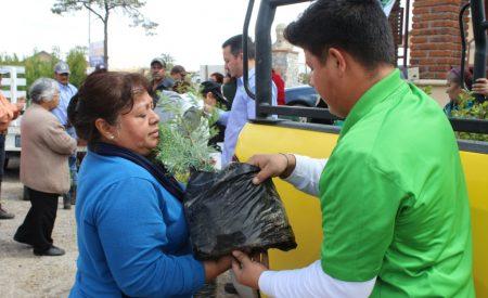 Autoridades en defensa del medio ambiente ausentes en 'Día Nacional del Árbol'