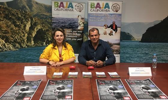 """Fomenta Gobierno del Estado turismo de mascotas con evento """"Classic Dog Show"""""""