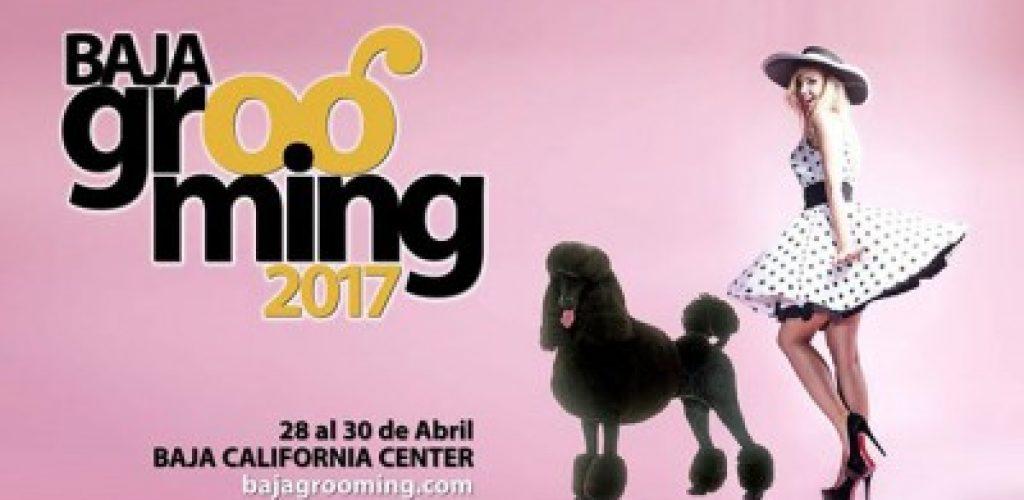 """Confirmados estilistas caninos internacionales en el """"Baja Grooming 2017"""""""