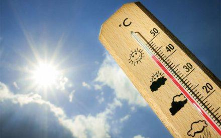Temperaturas superiores a 40 grados Celsius en 19 entidades