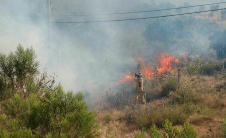 Incendio consume más de 35 hectáreas al Sur de Tecate