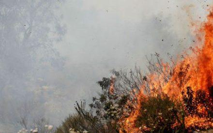 Torre de vigilancia en Tecate detectará incendios forestales