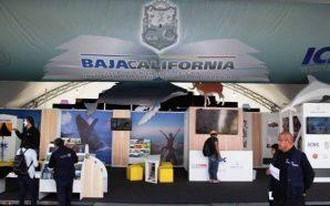 Participan Talentos Bajacalifornianos en laFeria del Libro Infantil y Juvenil