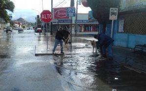 Obras Públicas del Ayuntamiento realiza limpieza de redes pluviales