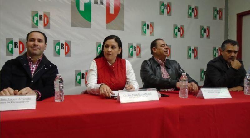 Unidad partidista en el PRI para entregar buenos resultados electorales: Sue Ellen Bernal