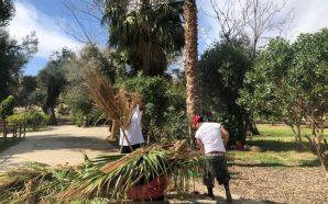 Realizan jornada de limpieza en parque Los Encinos