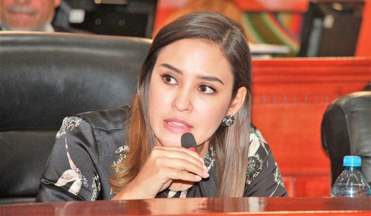 """Solicita diputada Patricia Ríos a Gobierno y CEDH avances de las 14 recomendaciones para atender """"Alerta de Género"""""""