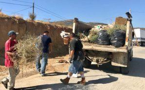 Participan vecinos en limpieza del Fracc. Mayab
