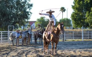 Rodeo y Charrería grandes atractivos de la Feria Tecate en…
