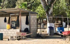 Llevan un 60% de avance en los trabajos de rehabilitación del campo debéisbol en Valle de las Palmas