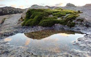 Lluvias acumuladas alcanzaron hasta 16 milímetros en zonas de Baja…