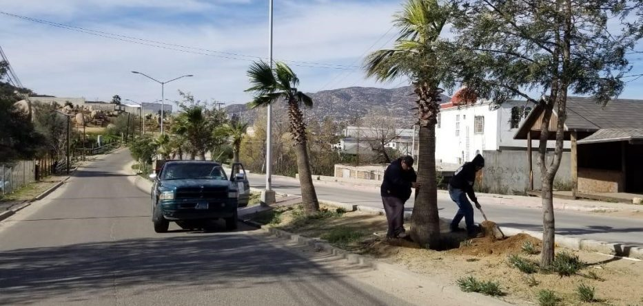 Obras Públicas intensifica labores en puntos clave de la ciudad