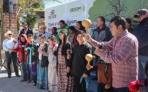 Se realizó en Tecate el Encuentro de Voces Indígenas 2019