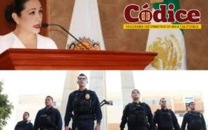 Presenta Diputada Araceli Geraldo iniciativa de Ley de seguridad social…