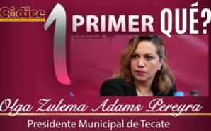 ¿Qué informar a un año del fracasado gobierno de Tecate?