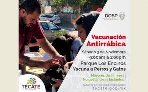 Habrá Jornada de Vacunación Antirrábica el próximo sábado 3 de noviembre