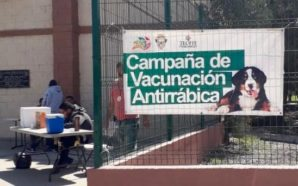 Arrancó en Tecate Semana Nacional de Vacunación Antirrábica