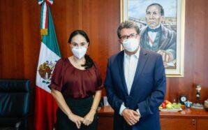La Senadora suplente del PRI, Nancy Sánchez se va a…