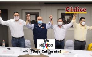"""Se cae """"Mega Alianza"""", PRI-PAN-PRD se registran fuera de tiempo,…"""
